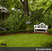 may17_hd_garden_privacy